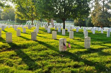 Arlington National Cemetery, DC