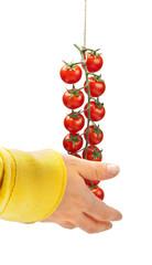 Acquistare pomodori pachino