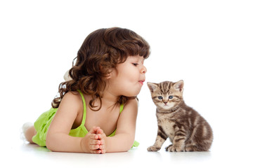 funny child playing and kissing Scottish kitten