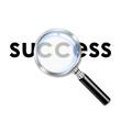 Icono lupa 3D con texto success