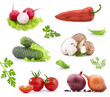 Collection of vegetables, isolated on white background