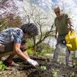 gemeinsam bei der Gartenarbeit