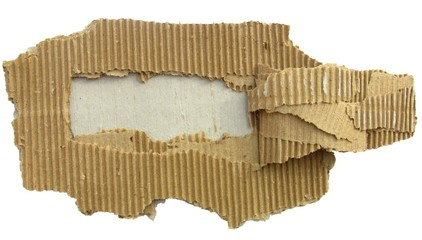 torn cardboard piece isolated on white