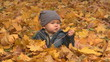 6 months boy sits surrounded by autumn leafs