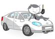 voiture 1