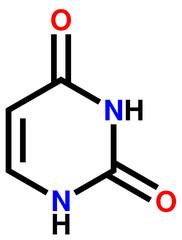 Nucleobase uracil structural formula