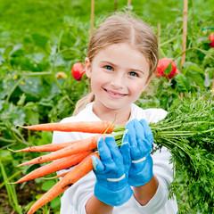 Vegetable garden - lovely gardener with bunch of fresh carrots