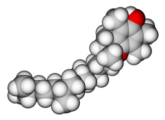 Alpha-tocopherol (vitamin E) space-filling molecular model