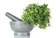 Parsley in a mortar and pestle isolated on white