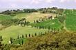 canvas print picture - Tuscany, la Foce