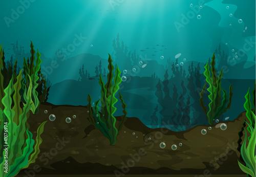 Fotobehang Onderzeeer Underwater