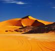 Fototapeten,afrika,algeria,wüste,düne