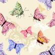 Butterflies seamless background