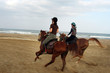 Horse Riding in Oman