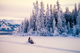 Fototapety Winter snow sports on a snowmobile
