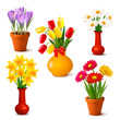 Spring and summer colorful flowers in vases  Vector