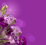 Fototapeta flora - magia - Tła