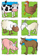 Cute farm animals collection