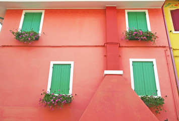 Windows with windowsill flower on the facade of a red building