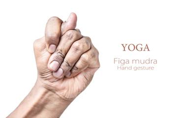 Yoga Figa mudra