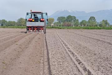 macchina per la semina delle patate