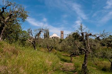 Santo Stefano - Pieve Lucca