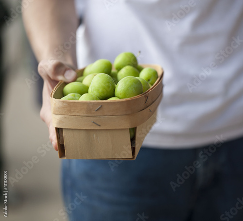 Farmer holding green peaches in a basket