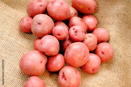 Fresh Grown Potatoes