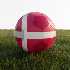 denmark soccer ball isolated on grass