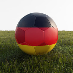german soccer ball isolated on grass