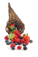Berry Fruit Cornucopia
