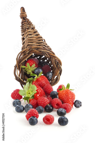 Berry Fruit Cornucopia