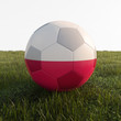 poland soccer ball isolated on grass