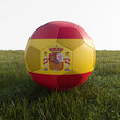 spain soccer ball isolated on grass