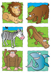 Cute wild animals collection