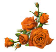 Decorations of orange roses blooms
