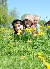 Kinder liegen in der Blumenwiese