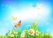 Sunny day background with flowers