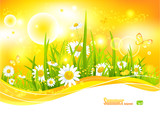 Fototapety Sunny bright background