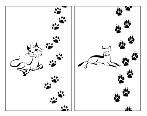 Cat and dog and footsteps