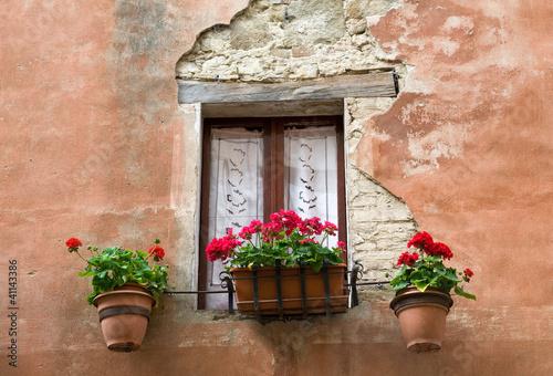 Finestra con tende e fiori di pietro d 39 antonio foto stock for Finestra con fiori disegno