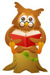 mascot owl - reading book while sitting