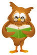 mascot owl - reading book