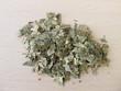 Birkenblätter, Betulae folium