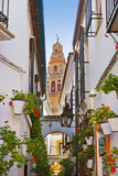 Flowers street at Cordoba Spain