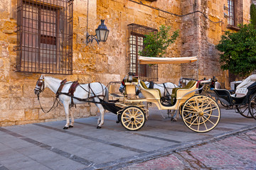 Traditional Horse and Cart at Cordoba Spain