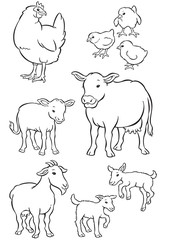 Mother & Baby hen, cow and goat