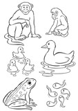 Mother & baby monkey, duck & frog