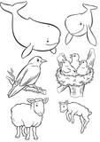 Mother & Baby whale, sheep & bird