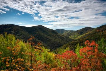 Idyllic autumn on Zumberak hills, Croatia